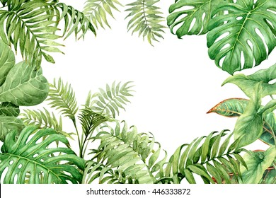 Hand drawn  branches and leaves of tropical plants. Natural green background with space for text. Watercolor floral frame.
