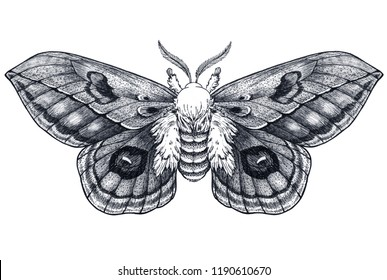 Hand drawn butterfly tattoo. Dotwork tattoo. Beautiful moth. Automeris Randa. Mystical symbol of freedom, beauty, life, perfection. Black and white tattoo