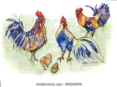 hand drawn clip art of roosters by color markers