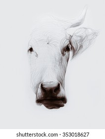Hand drawn cow isolated on white. Ballpoint pen drawing.