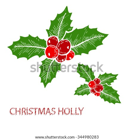 hand drawn decorative christmas holly decorations design elements can be used for cards - Christmas Holly Decorations