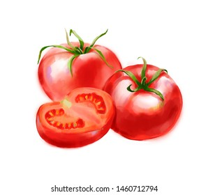 Hand drawn digital illustration in watercolor style. Red ripe realistic tomatoes, perfect rendered vegetables isolated on the white background