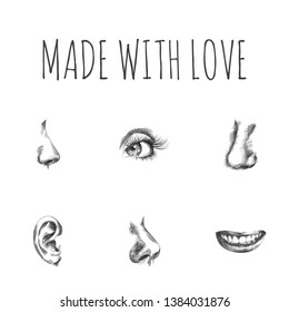 Hand drawn faceparts sketches set. Collection of nostril, sniff, smile and other sketch elements.