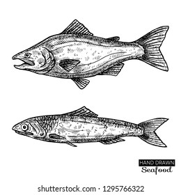 Hand drawn fish.