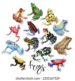 Hand drawn frog set isolated on white with lettering. Black ink contour and dots shadow, various colors, hatchwork style.