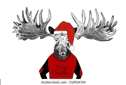 moose antlers images stock photos vectors shutterstock