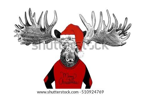 4ebaecbf hand drawn funny Christmas moose illustration, huge moose antlers and santa  claus hat on old