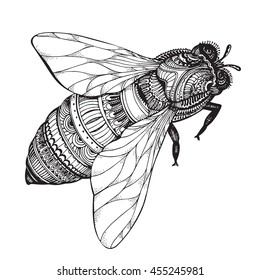 Hand drawn honey bee in zentangle style. Black and white  illustration
