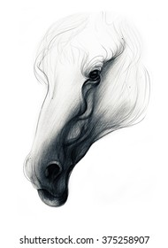 Hand drawn horse isolated on white background. Ballpoint pen drawing.