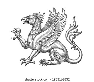 Hand drawn illlustration in the engraving style, symbolical medieval winged griffin.