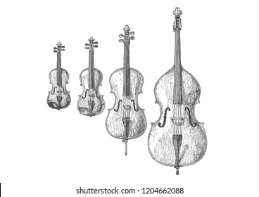 Hand drawn illustration of Bowed string instruments in vintage engraved style. Violin, Viola, Violoncello (Cello) and Contrabass (Double bass)