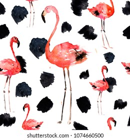 Hand Drawn Illustration With Flamingo and Dots. Tropical Summer Beach Motif. Swimwear Design, Wrapping, Background, Wallpaper, Fabric. Hawaiian Print. Jungle Birds Repeated Ornament. Africa.