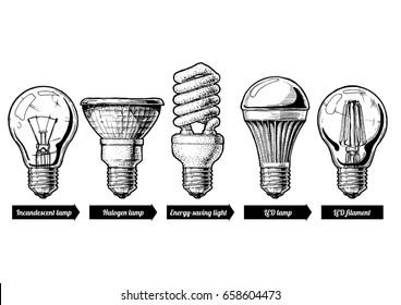 hand drawn illustration of the light bulb evolution set. incandescent lightbulb, tungsten halogen, Energy-saving light, LED lamp and light-emitting diode filament. Isolated on white background.