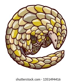 Hand drawn illustration of a pangolin curling into a ball. Isolated in white background.