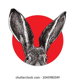Hand drawn illustration of rabbit with big ears in red circle. Good for tattoo design, stickers, cards