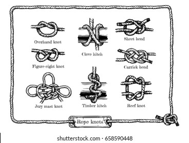 hand drawn illustration set of different rope knots. Figure-eight, jury mast (masthead), reef (square), overhand knot, clove and timber hitchs, sheet and carrick bends.