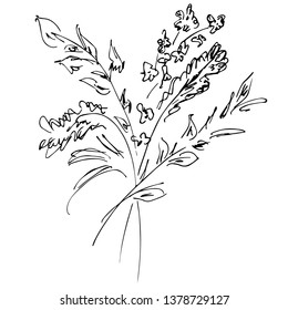 Hand Drawn  Illustrations Of Abstract Bouquet of Flowers Isolated on White. Hand Drawn Sketch of a Flowers.