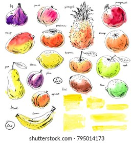 Hand drawn ink and watercolor sketch fruits, yellow watercolor stripes. Apple, orange, fig, pineapple, pear, mango, lime, plum, apricot, peach, kiwi, banana, pomegranate, persimmon.