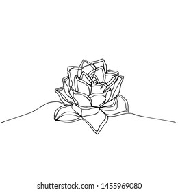 Hand drawn minimalistic succulent, one single continuous black line simple drawing. isolated on white background. Stock illustration.