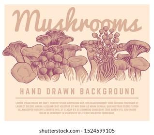 Hand drawn mushrooms background. Autumn gourmet truffles champignon oyster mushroom sketch illustration