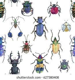 hand drawn painted seamless pattern of watercolor sketch of isolated beetles on white background