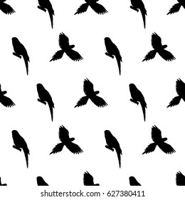 hand drawn painted seamless pattern of graphic sketch of isolated ara parrot birds on white background