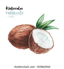 Hand drawn and painted watercolor coconuts. Eco food isolated on white background. Include work path.