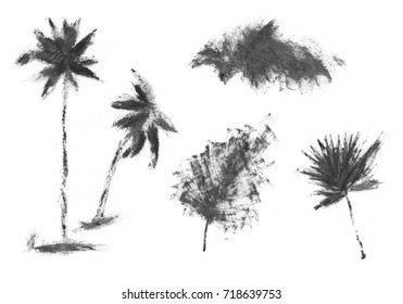 Hand drawn palm tree isolated on white background.  ink sketch, mascara illustration.Tropical palm tree. Sketch for printing on fabric, clothing, accessories, and design.