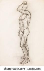 hand drawn pencil sketch illustrating human body muscles anatomy