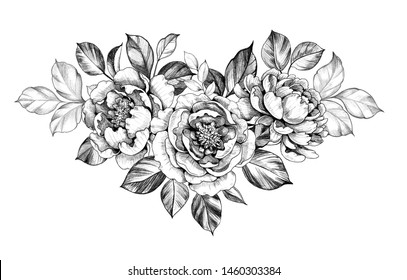 Hand drawn peony  flower and leaves isolated on white background. Pencil drawing monochrome elegant floral composition in vintage style, t-shirt, tattoo design.