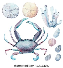 hand drawn sea set. There are  crab, stones, sand dollar here. It's perfect for card, poster, scrapbook design.