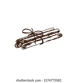 Hand drawn several cinnamon sticks bundled together.  illustration For coffee and tea shop and bakery. Pencil drawn in vintage engraving style. Separately on a white background.