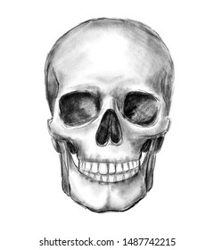 Hand drawn skull, monochrome illustration isolated on white background.