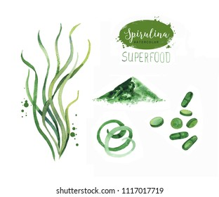 Hand drawn spirulina seaweed powder. Isolated Spirulina algae, pills, capsules and powder drawing on white background. Superfood artistic style illustration. Organic healthy food watercolor drawing