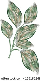 Hand drawn tropical leaves and fowers with outlines in artsy style and digital paiting