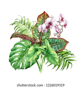 Hand drawn tropical plants. Floral bunch with green leaves and pink Phalaenopsis flowers isolated on white background.