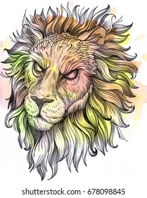 Hand drawn watercolor angry lion with watercolor stain