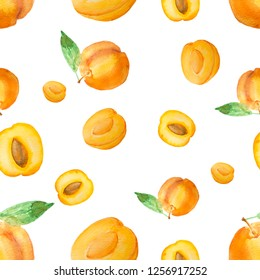 Hand drawn watercolor apricot pattern isolated on white background. Summer concept