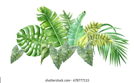Hand drawn watercolor border with tropical leaves