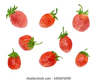 Hand drawn watercolor botanical illustration of strawberries, isolated on white background. Set of fruits.
