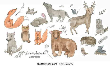 Hand drawn watercolor cartoon doodle animal set. Forest animals illustrations isolated on the white background