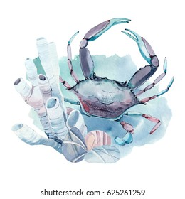 hand drawn watercolor crab. It's perfect for card, pattern design, postcard, banner, poster.