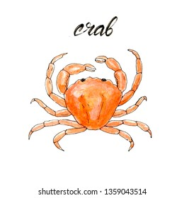 Hand drawn watercolor crab. Seafood and fish restaurant menu. Isolated raster illustration.
