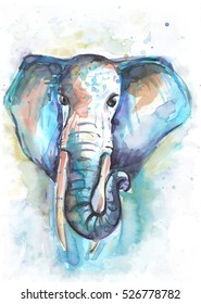 hand drawn watercolor elephant. watercolour illustration.