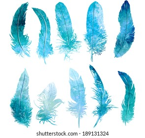 hand drawn watercolor  feather light blue set, raster illustration
