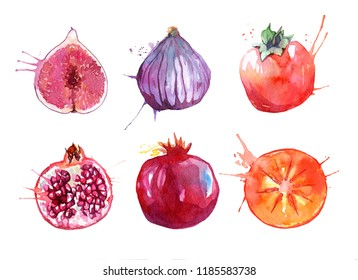 Hand drawn watercolor fruits set isolated on white background. Juicy Figs, pomegranates, persimmons with watercolor splashes.