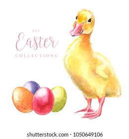 Hand drawn watercolor happy easter. Set with Easter eggs and birds design, duck, duckling. Illustration on white background.