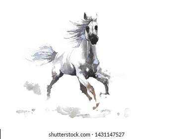 Hand drawn watercolor illustration Arabian white horse for t-shirt, phone case, textile design or decoration