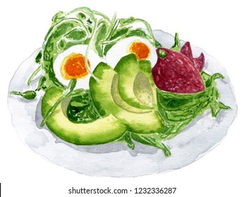 Hand drawn watercolor illustration of avocado salad with egg, avocado, lettuce, beet, sprout. Food illustration isolated on white background.
