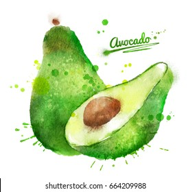 Hand drawn watercolor illustration of avocado with paint splashes.